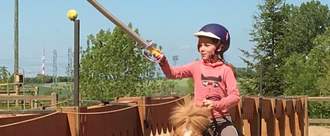 chevalerie champsforts poney stage issoudun