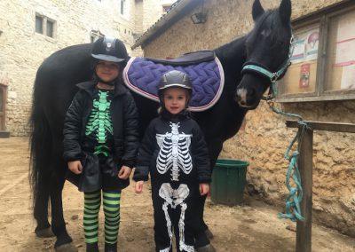 hollowen centre equestre poney club des champs forts