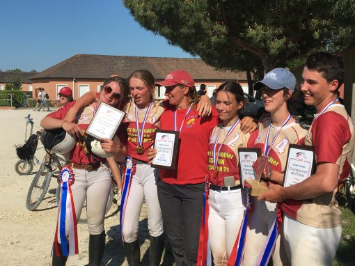 championnat horse ball lamotte beuvron 2019 champs forts medaille d'or